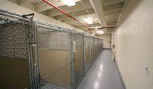 Whiting Animal Shelter